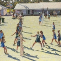 2012, Netball, Available -$3,000                    Acrylic on Canvas 810x1035 mm
