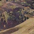 2000  L'Apres Midi, Private Collection,    900x650mm,  Acrylic On Canvas